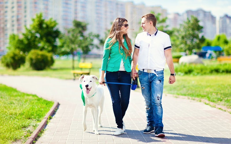 Young couple walking their dog just outside the apartment building